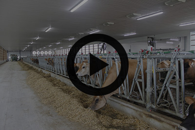 Slideshow preview - Open Hendriks Dairies Ltd. Slideshow