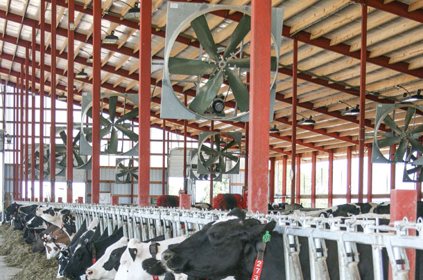 Get ready to reduce cow cooling costs this summer - Progressive