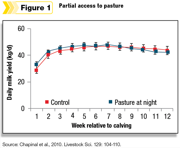 Partial access to pasture