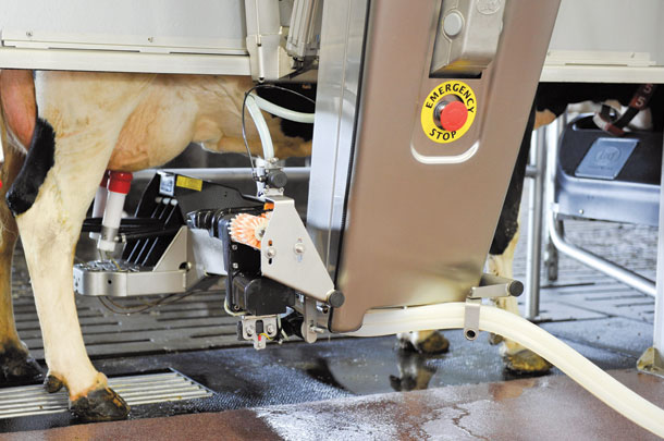Automatic milking sytems