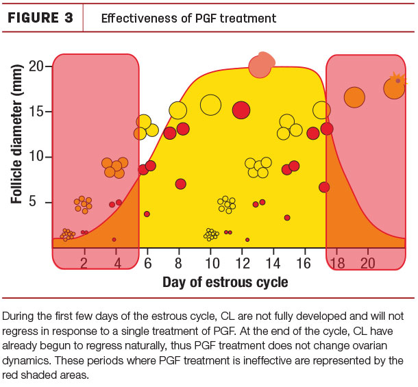 Effectiveness of PGF treatment
