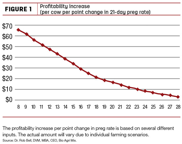 Profitibility increase