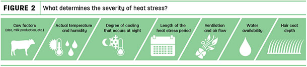 What determines the severity of heat stress?