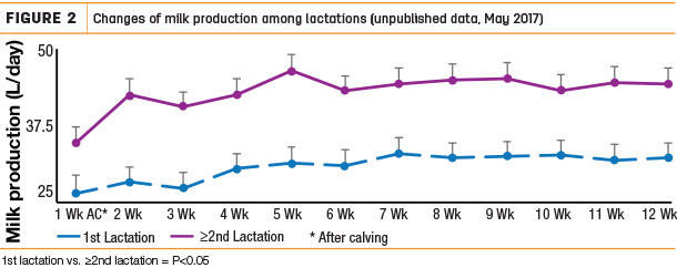 Changes of milk production among lactations