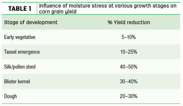 Influence of moisture stress at various growth sages on corn grain yield