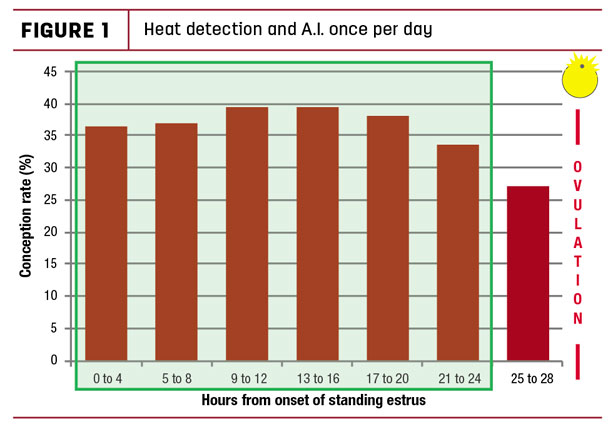 Heat detection and A.I. once per day