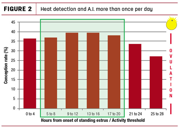 Heat detection and A.I. more than once per day