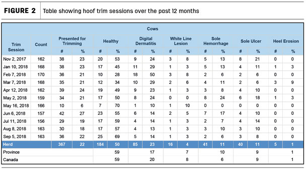 Table showing hoof trim sessions over the past 12 months