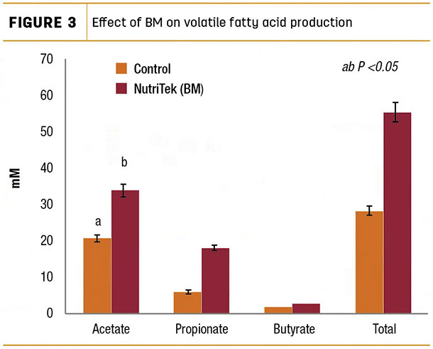 Effect of BM on volatile fatty acid production