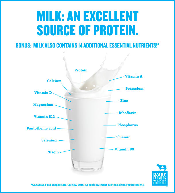 milk, an excellent source of protein
