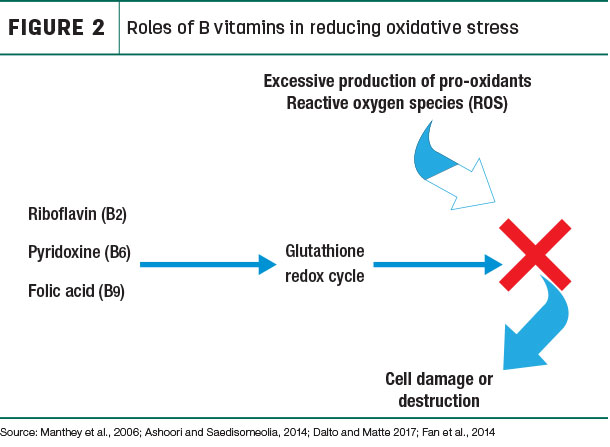 Roles of B vitamins in reducing oxidative stress