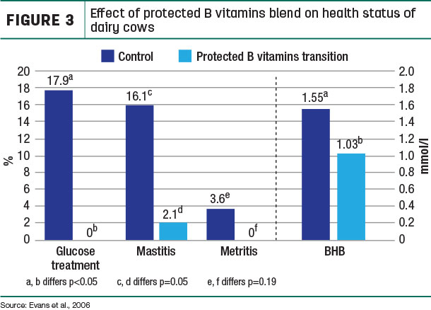 Effect of protected B vitamins blend on health status of dairy cows