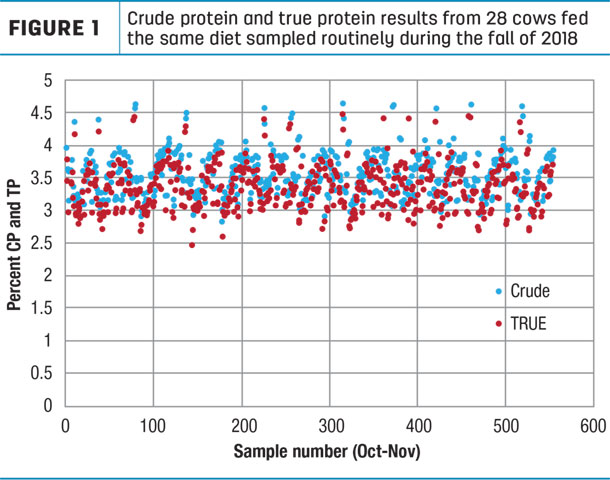 Crude protein and true protein results from 28 cows fed the same diet sampled routinely during the fall of 2018