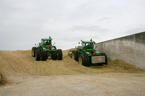 corn silage pile