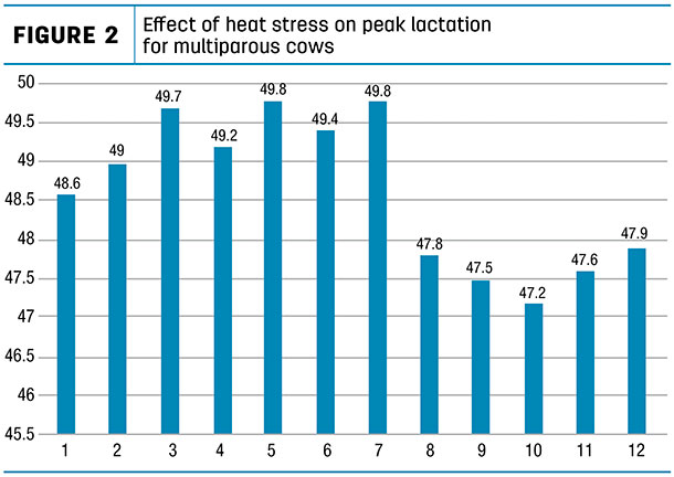 Effect of heat stress on peak lactation  for multiparous cows