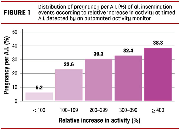 Distribution of pregnancy per A.I. (%) of all insemination events according to relative increase in activity at timed A.I. detected by an automated activity monitor