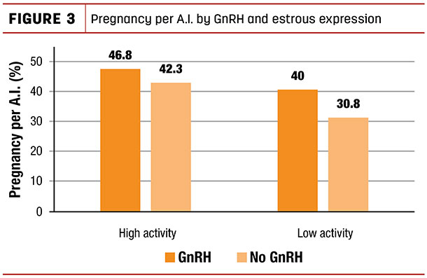 Pregnancy per A.I. by GnRH and estrous expression