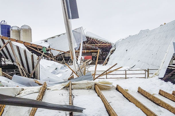 Collapsed dairy barn