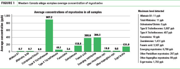Western Canada silage samples average concentration of mycotoxins