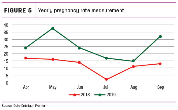 Yearly pregnancy rate measurement