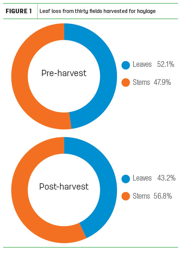 Leaf loss from 30 fields harvested for haylage