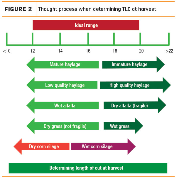 Thought process when determining TLC at harvest