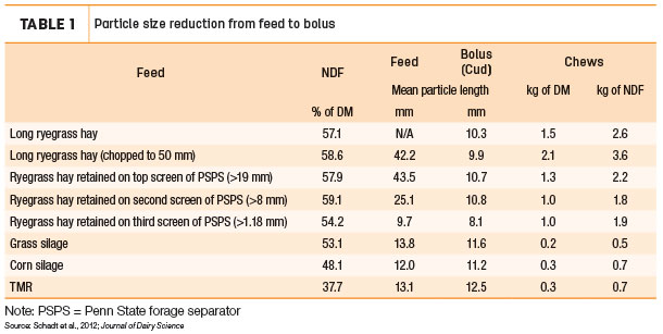 Particle size reduction from feed and bolus