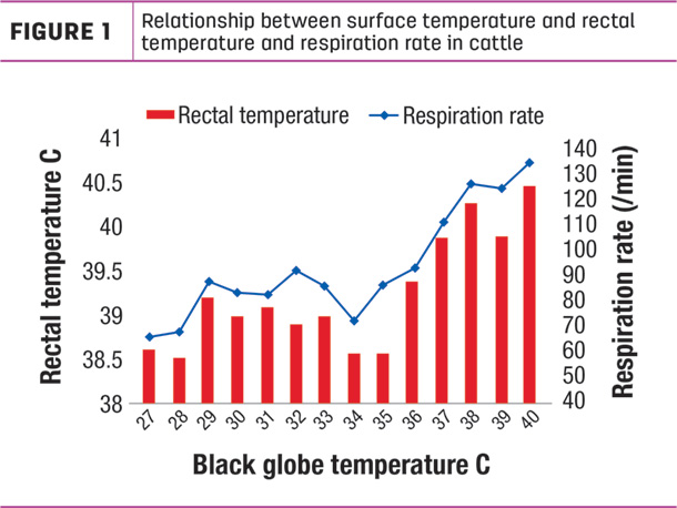 relationship between surface temperature and rectal temperature