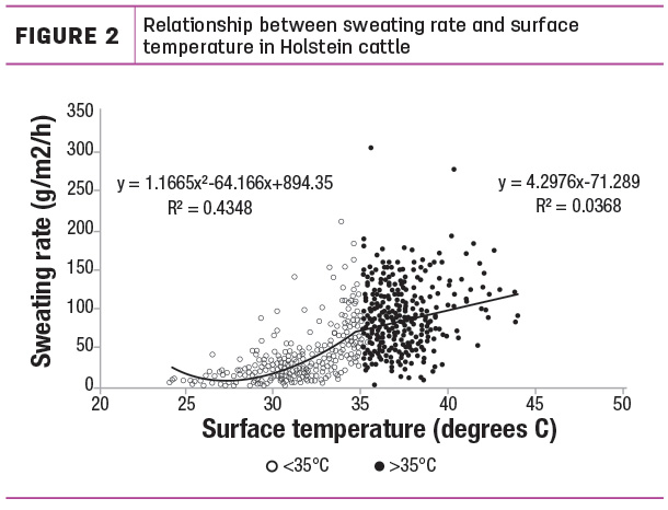 Relationship between sweating rate and surface temperature in Holstein cattle